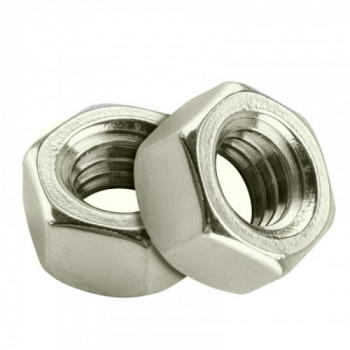 M20 Hex Nuts - (A4 Stainless) x 10