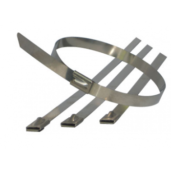 300mm x 4.6mm Cable Ties x 100 (A4 Stainless)